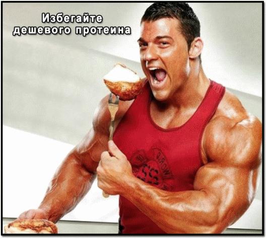 чем вреден протеин для мужской потенции
